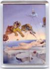 Magnètics Dalí